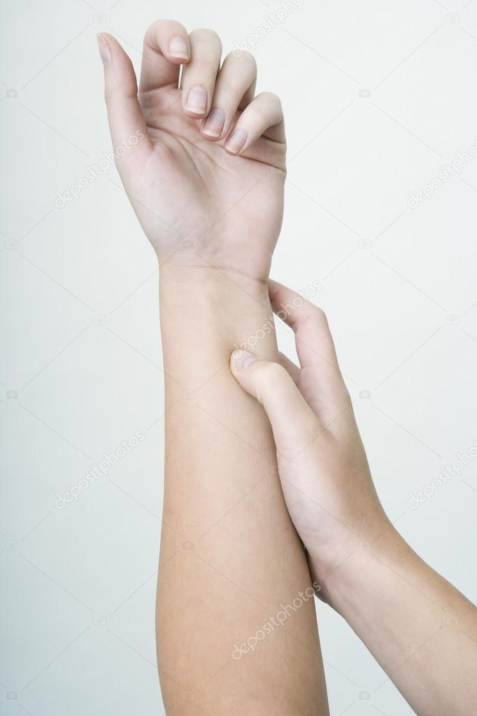 Предплечье где находится у человека: анатомия