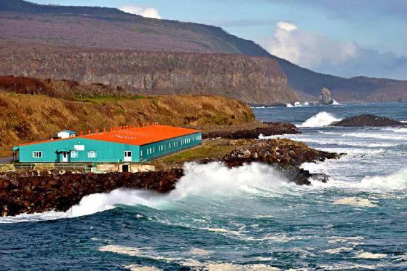 Цунами — википедия. что такое цунами