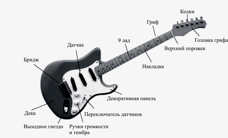 Какие бывают гитары: происхождение, виды