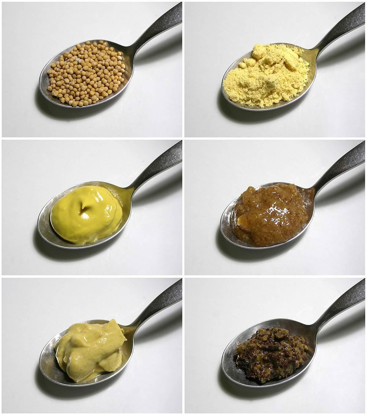 Состав и калорийность зернистой горчицы, польза и вред, интересные рецепты