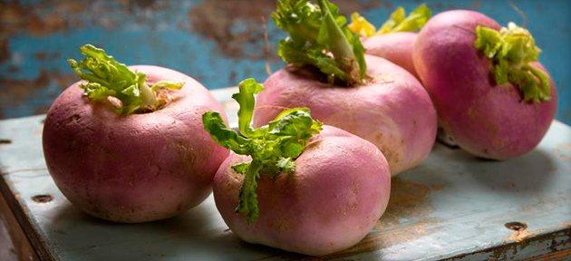Турнепс – что это такое, состав и виды растения, уход и выращивание, рецепты приготовления блюд