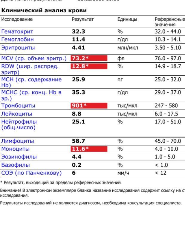 Rdw в анализе крови – что это такое? анизоцитоз эритроцитов – что это такое в общем анализе крови, расшифровка, норма у женщин, мужчин, детей?