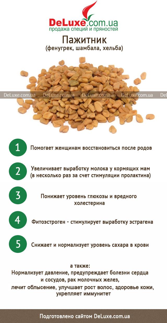 Хельба: полезные свойства, противопоказания, польза, рецепты