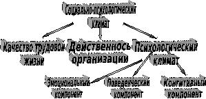 Определение коллектива: стадии развития и формирования, что значит идеальный