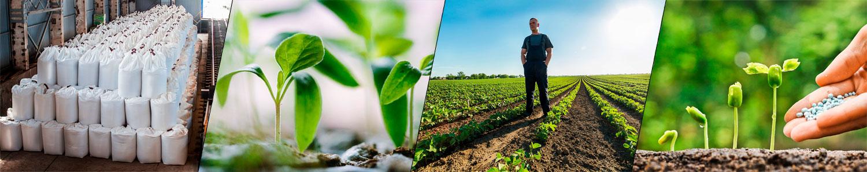Минеральные удобрения: виды, как вносить, какие лучше