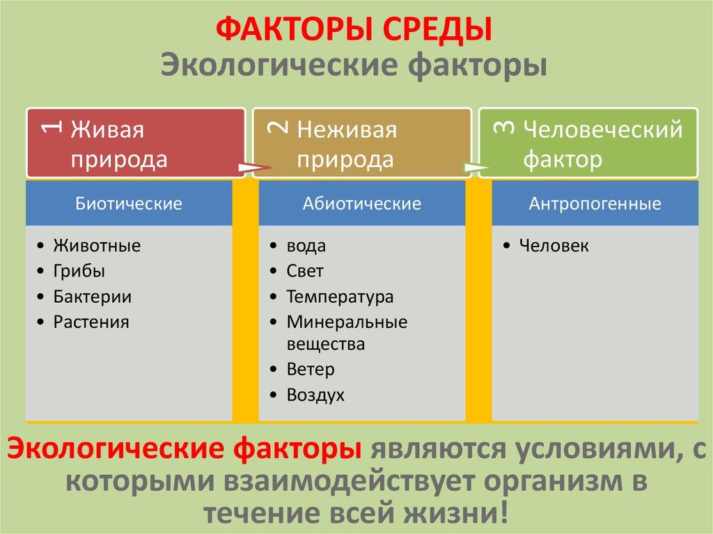 Среда обитания и экологические факторы