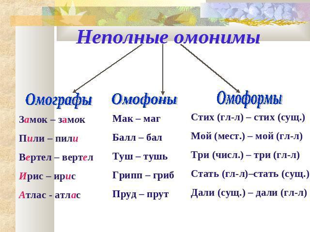 Омоформы википедия