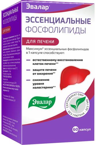 Эссенциальные фосфолипиды в терапии заболеваний печени - медицинский портал «health-ua.org»