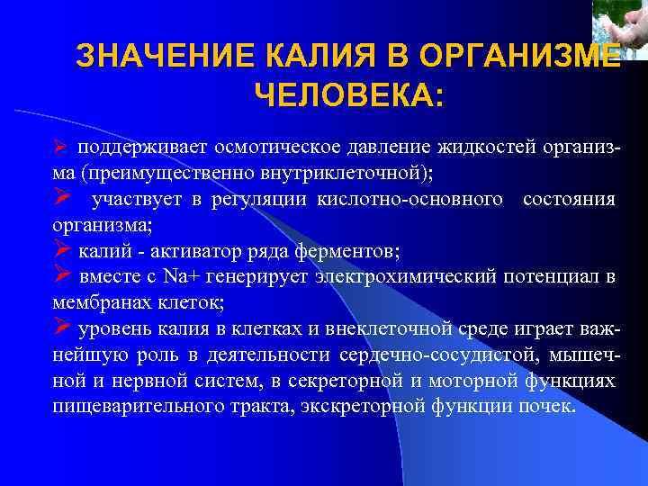 Калийные удобрения – что это такое, их названия, значение и применение | дела огородные (огород.ru)