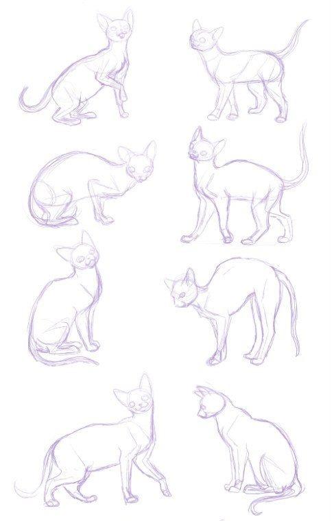 Идеи рисунков - лучшие рисунки на разные тематики. подробный мастер-класс для начинающих с фото-обзорами
