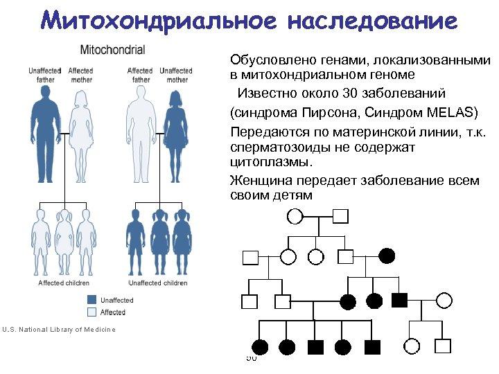Наследственность человека. как работают наши гены? наследование генетических признаков и планирование беременности