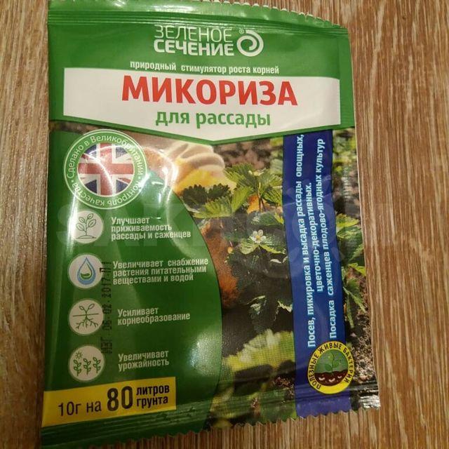 Что представляет собой микориза и как она влияет на почву и растения | дела огородные (огород.ru)