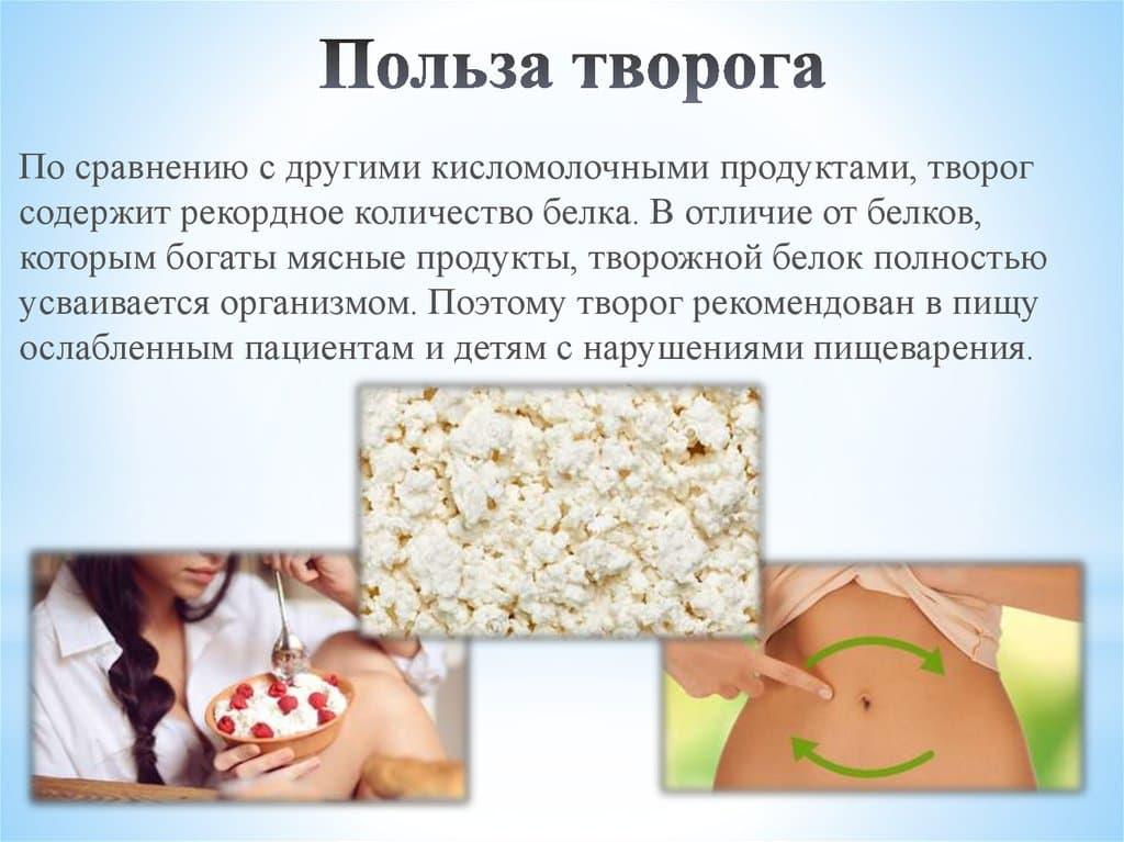 Творог - полезные свойства, состав и противопоказания (+ 19 фото)