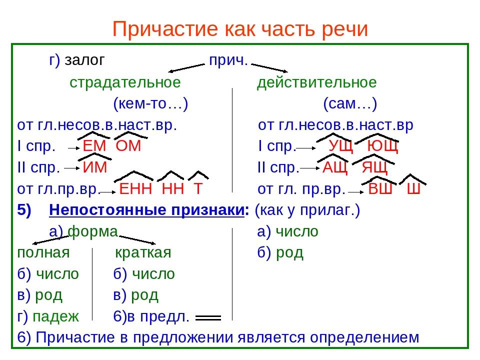 Действительное причастие настоящего времени   русская грамматика