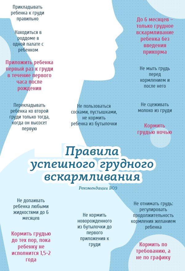 Что такое лактация, что происходит с женщиной в этот период, основные этапы и правила