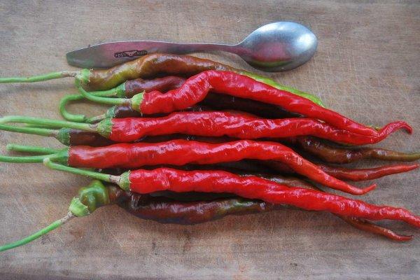 Чем полезен болгарский перец для организма. какой есть вред от него