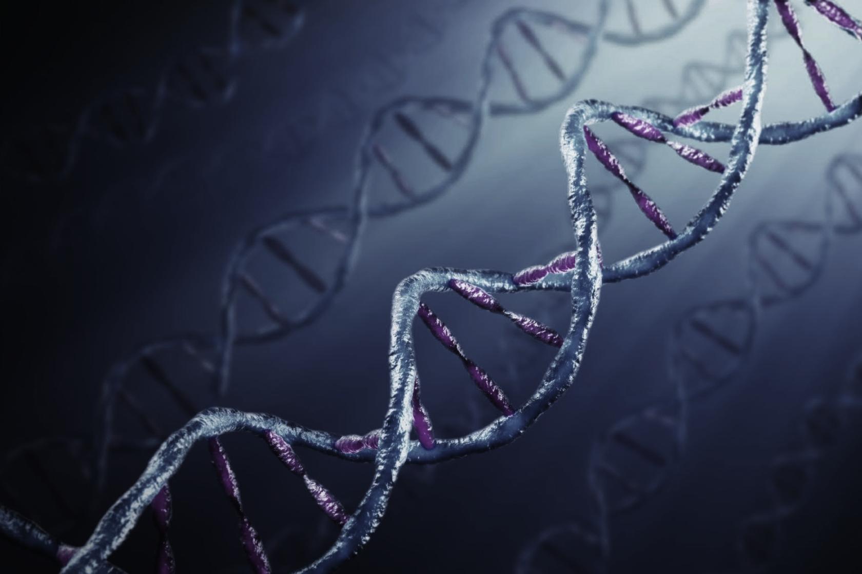 Гены и генетика. клонирование и наследственность