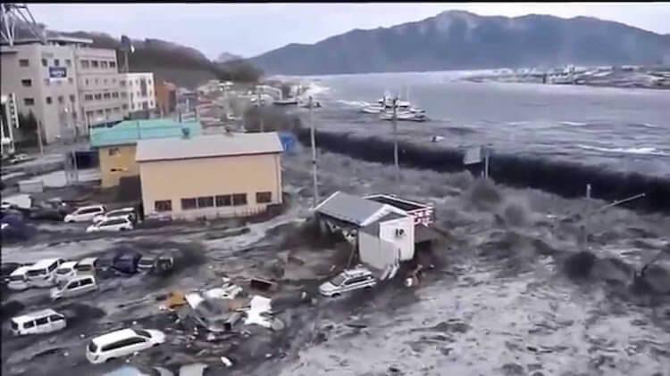 Цунами. причины возникновения цунами, последствия цунами. | fenix-life.ru
