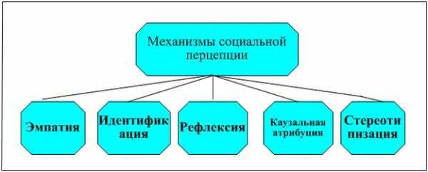 Перцепция - эффекты и механизмы социальной перцепции