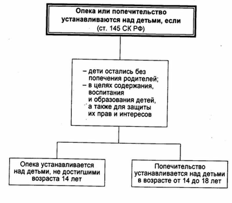 Виды опеки и попечительства (формы): понятие, отличия форм