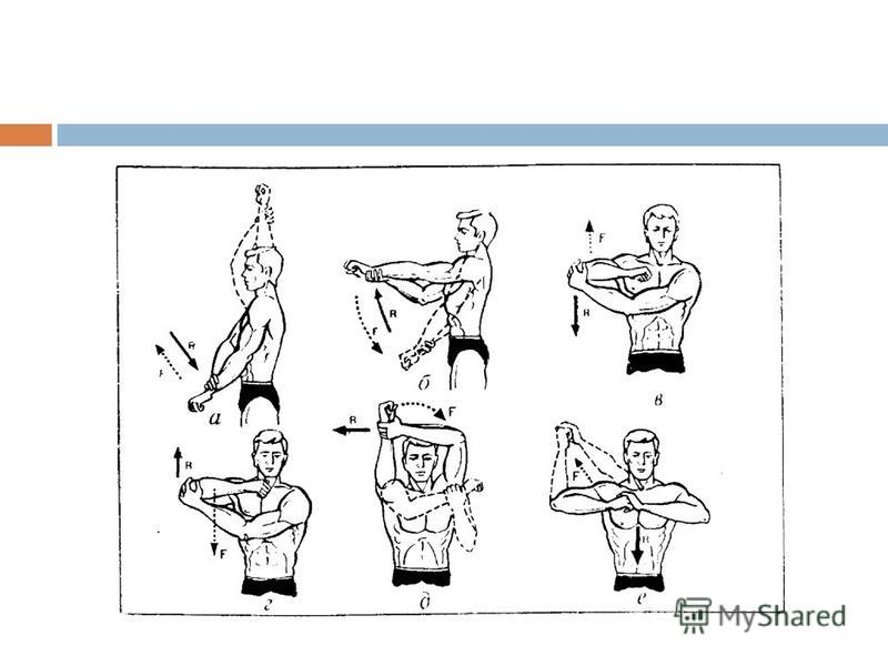 Примерные общеразвивающие упражнения,