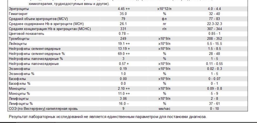 Mchc в анализе крови повышен — причины, диагностика, методы коррекции