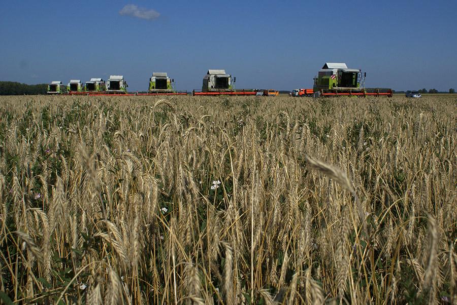 Объясните термины «присваивающее хозяйство и «производящее хозяйство. как появление производящего хозяйства повлияло на жизнь людей? - универ soloby