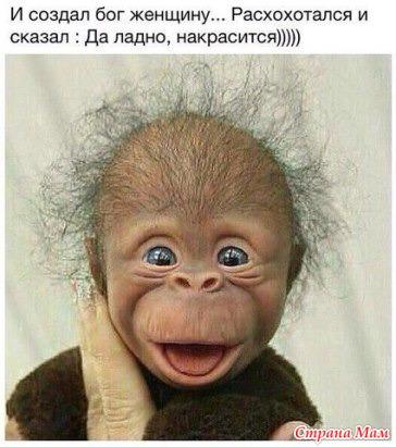 Чепушила – это… значение и толкование слова :: syl.ru