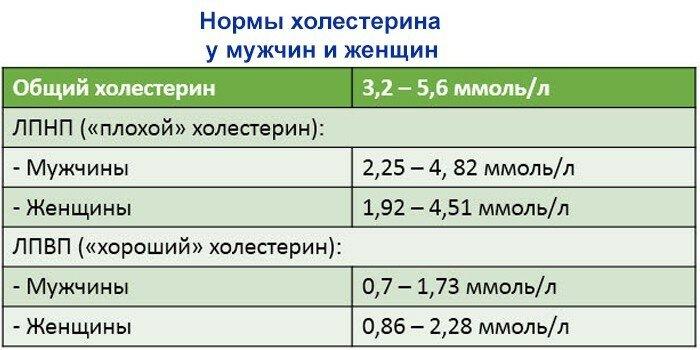 Липопротеиды низкой плотности - лпнп: норма, повышены, понижены