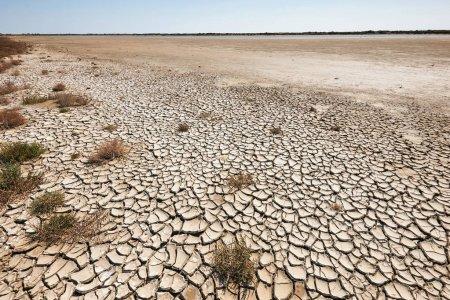 Борьба с опустыниванием земель