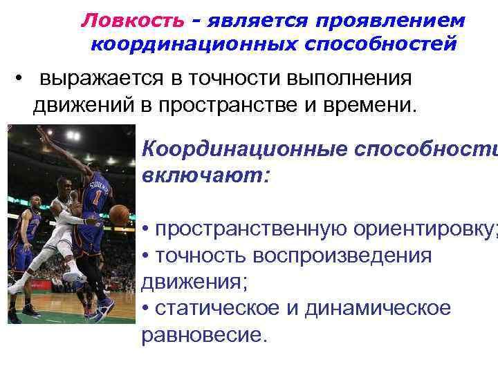 Физические качества и двигательные способности спортсмена