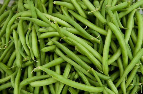Фасоль - виды продукта, полезные свойства, пищевая ценность