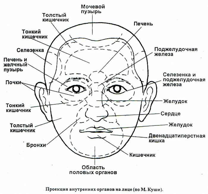 Типы кожи лица: описание, тесты на определение