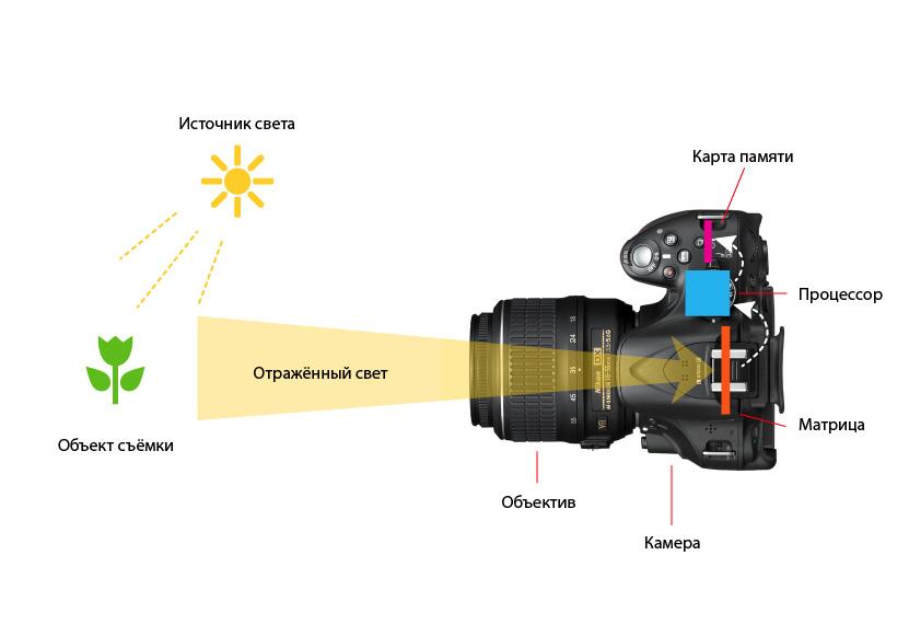 Из чего состоит фотоаппарат? - статья фотоискусства раздела фотоаппарат и его настройки. полезная информация по теме и интересные материалы :: fotoprizer.ru
