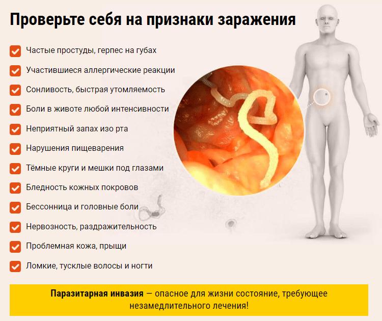 Глисты у взрослого человека: признаки, симптомы и схема лечения