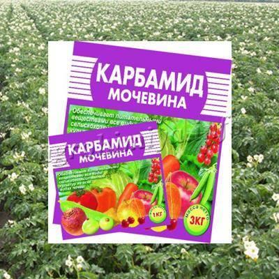 Карбамид (мочевина): что это за удобрение? обработка сада мочевиной осенью и весной, опрыскивание деревьев. инструкция по применению от вредителей и болезней