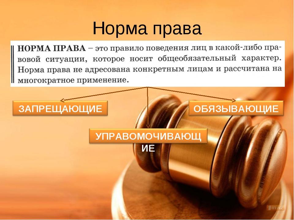 Нормы права: понятие, структура, виды