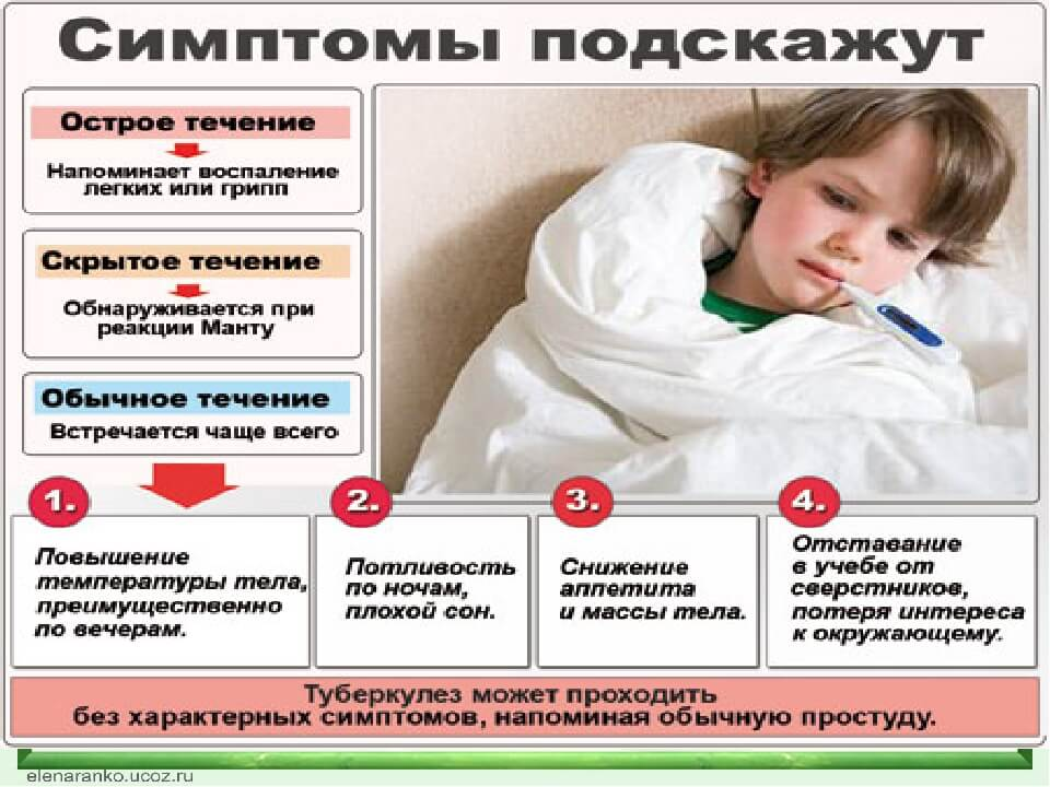 Что такое туберкулез - статьи о пульмонологии