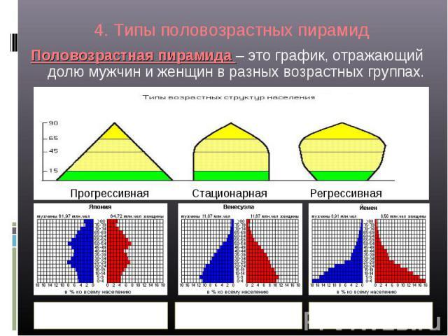 3.3.5. половозрастные пирамиды