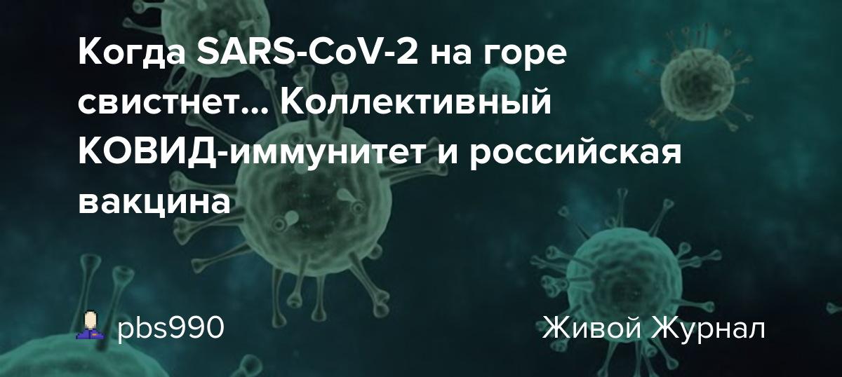 Что такое популяционный иммунитет (коллективный иммунитет)