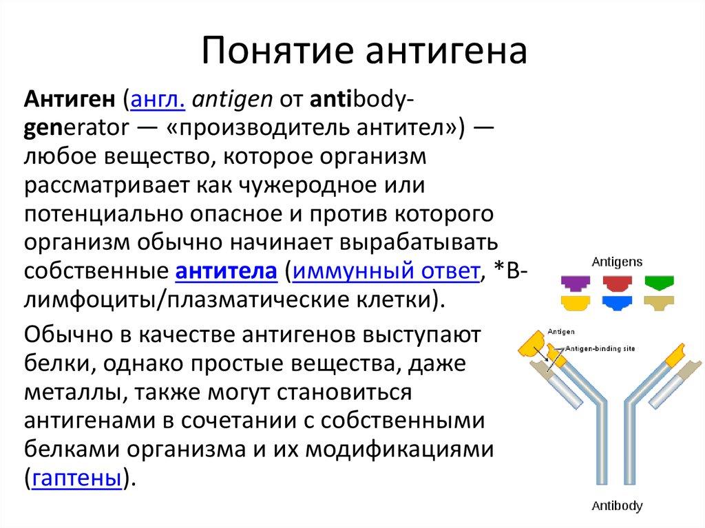 Значение слова антиген. что такое антиген?