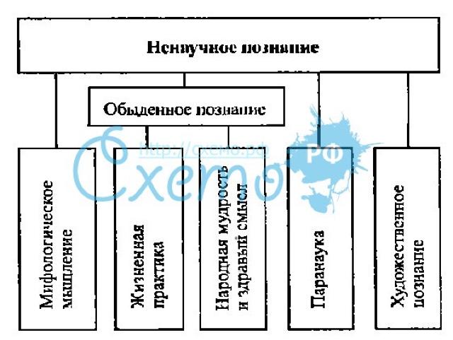 Познание в философииж проблема метода и его теория