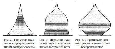 Демографическая ситуация в россии. анализ половозрастных пирамид