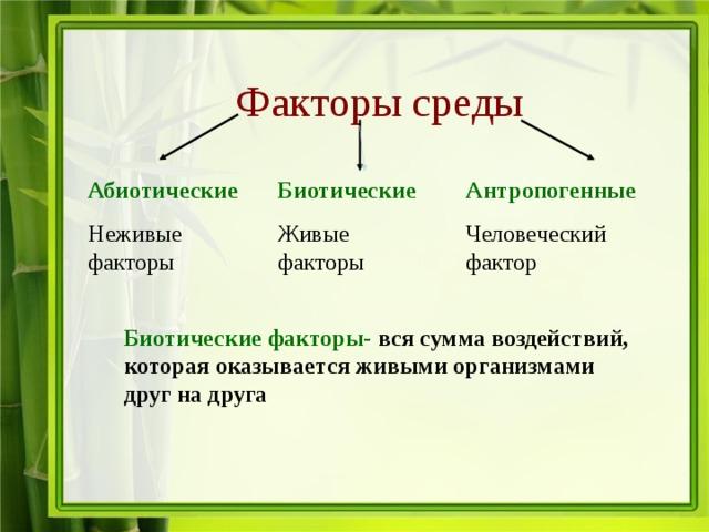 Биотические факторы среды - примеры, влияние и краткая характеристика — природа мира