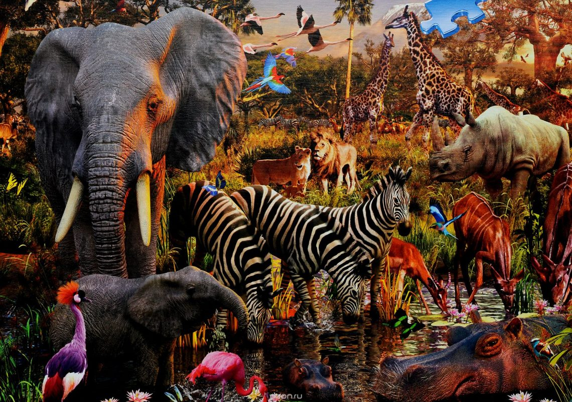 Определение понятий «флора» и «фауна». цель и задачи, основные разделы, связь с другими науками.