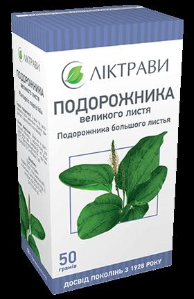 Подорожник: выращивание в саду, посадка и уход, лечебные свойства