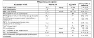 Mchc в анализе крови: расшифровка и нормы показателя