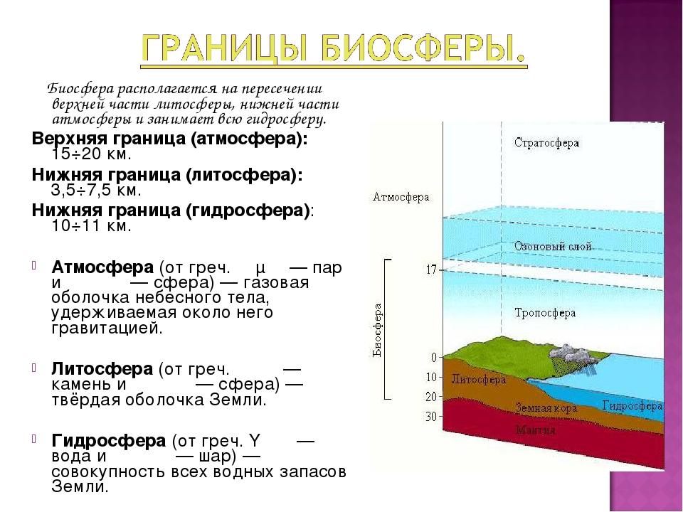 Чем биосфера отличается от других оболочек земли. биосфера земли. вопросы и задания