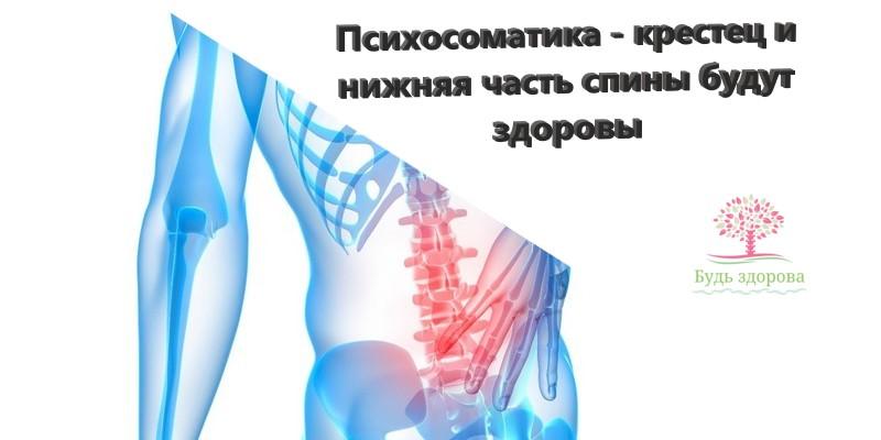 Крестец • ru.knowledgr.com