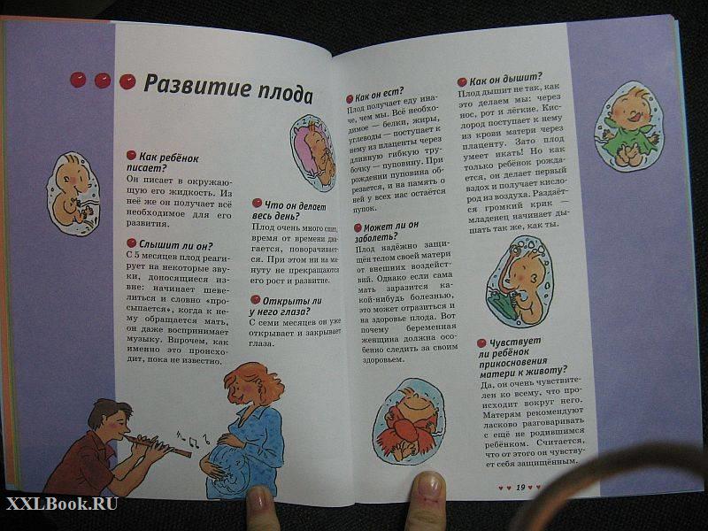 Разговоры о сексе: что и когда нужно знать вашему ребенку